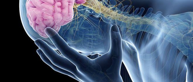 """Photo d'illustration. """"À mon sens, le quotient émotionnel relève un peu de l'oxymore!"""" explique le neurochirurgien Marc Lévêque."""