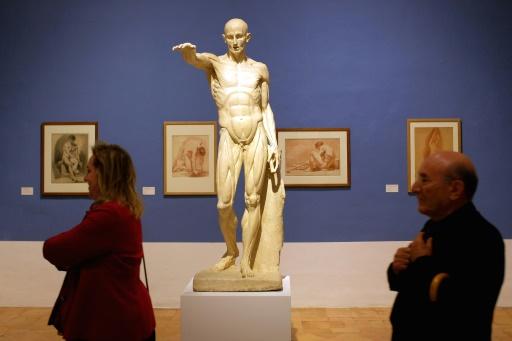 L'Ecorché, sculpture de l'artiste Jean-Antoine Houdon, exposé à la Villa Médicis à Rome © ALBERTO PIZZOLI AFP