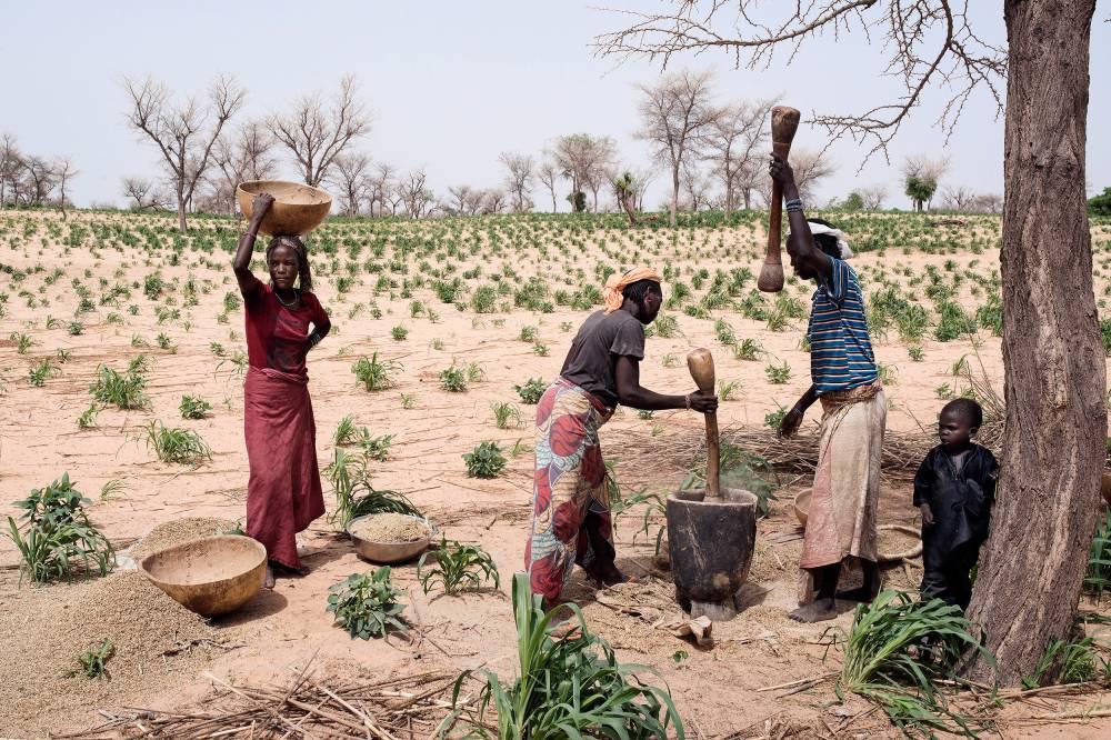 Misère. Seulement 12 % des terres nigériennes sont cultivables. Les récoltes ne suffisent plus à nourrir une population qui ne cesse d'augmenter. Ici sur la route de Yahouri, près du village de Makera. ©  Michaël Zumstein/Agence VU'