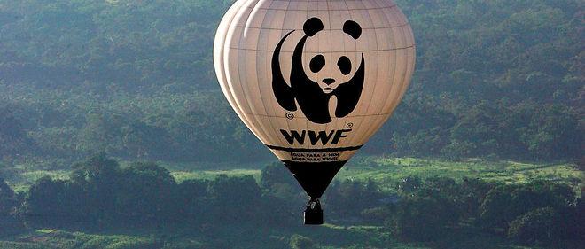 Une montgolfière WWF au-dessus de l'Amazonie.