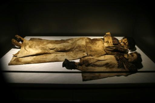 Des momies découvertes dans la vallée de Qadicha au Liban, exposées au musée national de Beyrouth, le 13 octobre 2016 © JOSEPH EID AFP