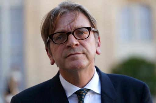 Guy Verhofstadt, membre du Parlement européen, et ancien Premier ministre belge s'adresse à des journalistes après une rencontre avec le président français, au palais de l'Elysées à Paris le 29 septembre 2015 © THOMAS SAMSON AFP/Archives