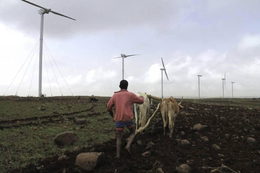 Un agriculteur éthiopien laboure son champ au pied d'une éolienne sur les hauteurs d'Adama, au sud d'Addis Abeba, le 15 juin 2015.  ©  AFP