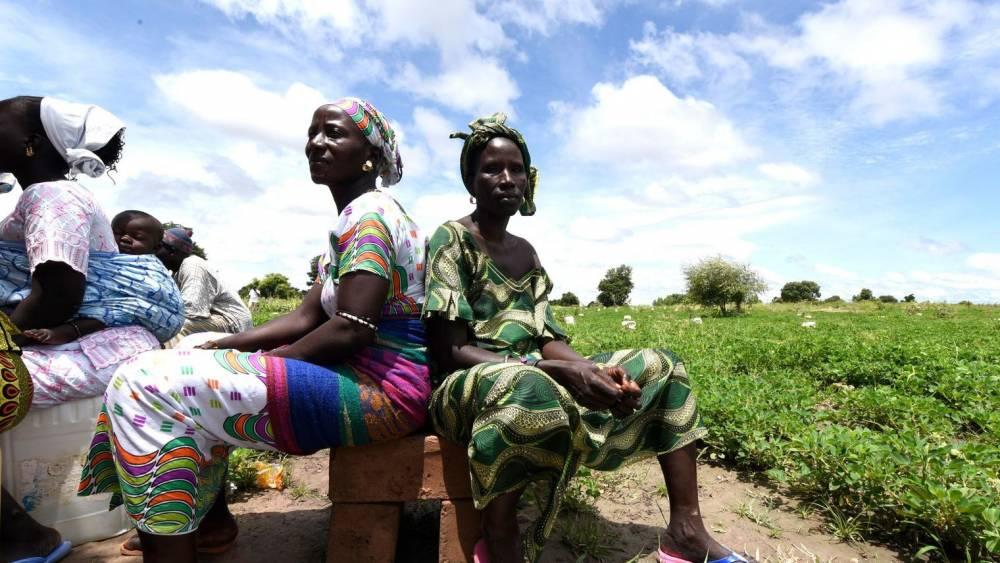 Des fermiers de Daga Birame, dans le centre du Sénégal, le 1er octobre 2015.  ©  afp.com/Seyllou