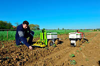 Start up Naio Technologies, developpement d'outils innovants en agrobotique, dans le but de moderniser, d'automatiser et d'augmenter la productivite de l'agriculture. Mise au point du robot Oz electrique, eco tracteur facilitant le travail de la terre, desherbage mecanique en agriculture ©Lydie LECARPENTIER/REA