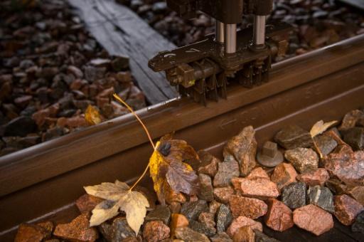 Des feuilles mortes sur la ligne de train entre Saint-Pierre-des-corps et Vierzon, le 18 novembre 2016 © Guillaume SOUVANT AFP