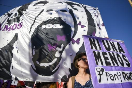 Le rassemblement de Buenos Aires contre la violence faite aux femmes, le 25 novembre 2016 © EITAN ABRAMOVICH AFP