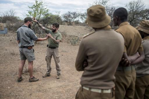 Séance d'entraînement pour une équipe de rangers et d'anciens militaires lors d'une opération de lutte contre le braconnage le 10 novembre 2016 dans la réserve de Kuduland à Musina en Afrique du Sud © MUJAHID SAFODIEN AFP/Archives