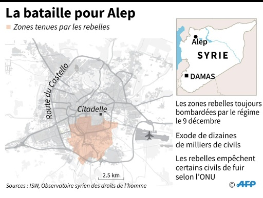 La bataille pour Alep © AFP  AFP