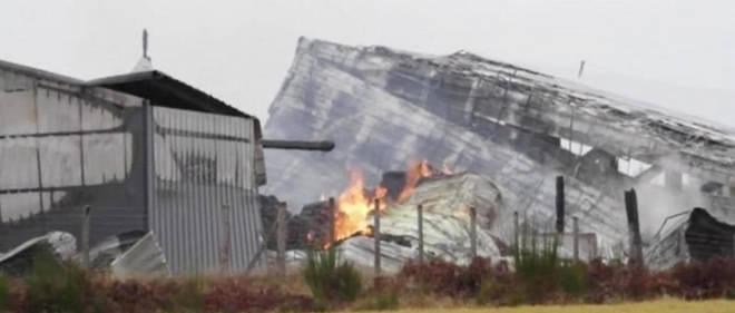 Signalé vers 5 heures, le feu violent a sérieusement endommagé un bâtiment de 1 500 m2 situé à l'écart des installations abritant les broutards de cette structure construite à Saint-Martial-le-Vieux, dans la Creuse.