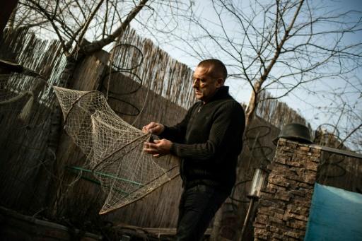 Renato Grbic, pêcheur, restaurateur et à l'occasion sauveur du Danube, ramende un filet de pêche, le 21 décembre 2016 à Belgrade © ANDREJ ISAKOVIC AFP
