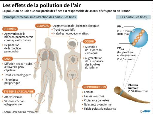 Les effets de la pollution de l'air © Alain BOMMENEL, Sophie RAMIS AFP