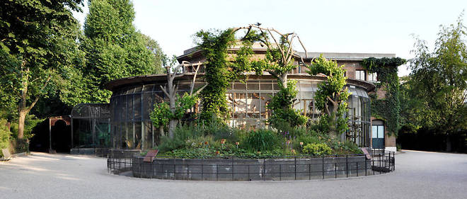 Culture on Live : visitez la Ménagerie du Jardin des plantes - Le Point