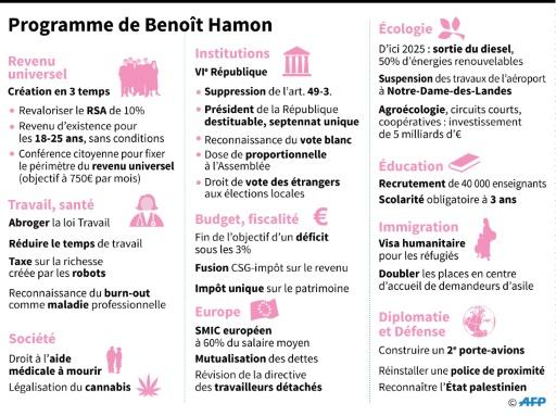 Programme de Benoît Hamon © Thomas SAINT-CRICQ, Paz PIZARRO, Kun TIAN AFP