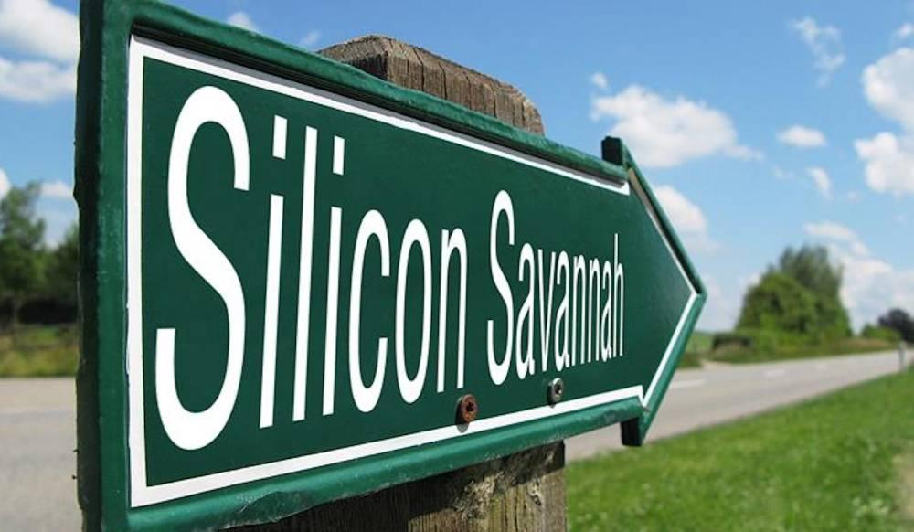 La Silicon Savannah c'est plus de plus de 250 startups, incubateurs, accélérateurs, institutions ou universités.  ©  DR