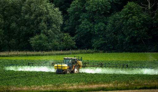 Un tracteur épand des pesticides dans un champs de céréales à Bailleul, dans le Nord de la France, le 15 juin 2015  © PHILIPPE HUGUEN AFP/Archives