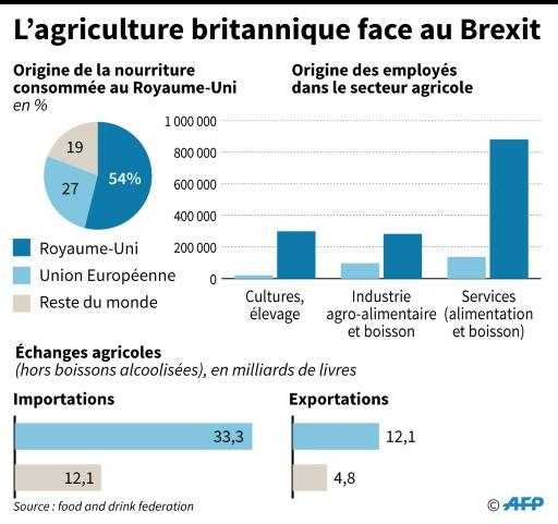L'agriculture britannique face au Brexit © Thomas SAINT-CRICQ, Sophie RAMIS AFP