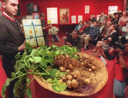 """Une vente de """"bonnotes de Noirmoutier"""" à Paris,  le 20 avril 1996, un an après la relance de la production de ce type de pommes de terre © JACQUES DEMARTHON AFP/Archives"""