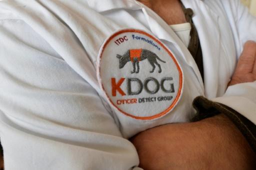 Écusson du projet Kdog dont l'objectif est d'exploiter le flair très développé du chien afin de détecter les cancers à des stades précoces.  © PASCAL LACHENAUD AFP/Archives