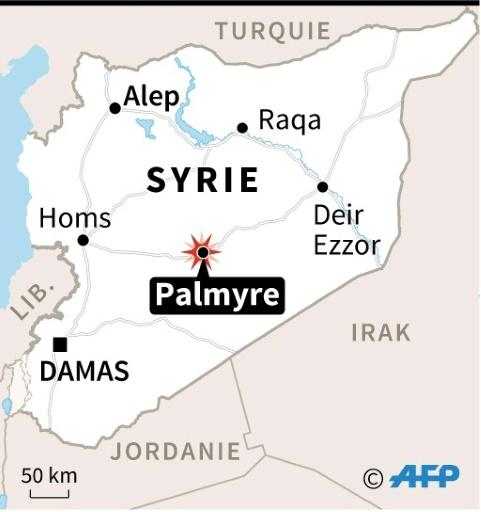 Localisation de Palmyre où l'armée syrienne a affirmé avoir abattu un avion israélien, ce qu'Israël a réfuté © AFP, Vincent LEFAI AFP