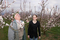 Gérard et Mélusine Roch, père et fille, produisent des fruits bio. ©Le Point