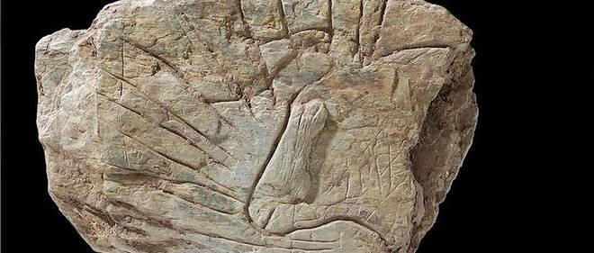 Tablette n° 317 ornée sur chaque face d'une tête d'auroch, trouvée près de Plougastel-Daoulas (Finistère).
