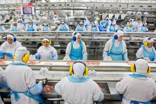 Une chaîne de production de la viande de poulet à Lapa, au Brésil, le 21 mars 2017 © RODRIGO FONSECA AFP