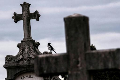 Un oiseau sur une tombe du cimetière de Loyasse, à Lyon, le 21 mars 2017 © JEFF PACHOUD AFP/Archives