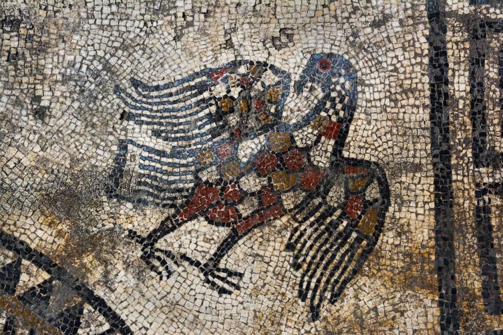 Aigle, mosaïque d'Uzès ©  © Denis Gliksman, Inrap.