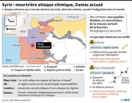 Syrie : meurtrière attaque chimique © Sabrina BLANCHARD, Alain BOMMENEL AFP