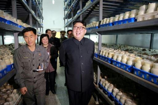 Photo fournie le 8 avril 2017 par l'agence officielle nord-coréenne Kcna du leader Kim Jong-Un visitant une ferme aux champignons à Pyongyang ©  KCNA VIA KNS/AFP