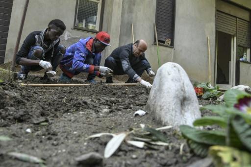 Sekou, originaire du Mali, Saliffu, originaire du Ghana et Youcif, originaire d'Irak, suivent un cours de jardinage à Sant' Alessio in Aspromonte © Andreas SOLARO AFP