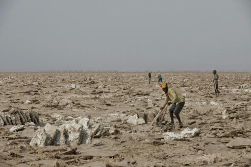 Des hommes extraient du sel sur les bords du lac Assalé dans la région de la dépression du Danakil, le 28 mars 2017 à Afar, en Ethiopie © ZACHARIAS ABUBEKER AFP