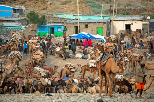 Le marché au sel de Berhale, le 27 mars 2017 en Ethiopie © ZACHARIAS ABUBEKER AFP