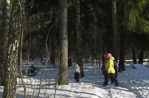 Des habitants marchent dans les bois aux abords de Moscou, le 16 février 2017 © VASILY MAXIMOV  AFP