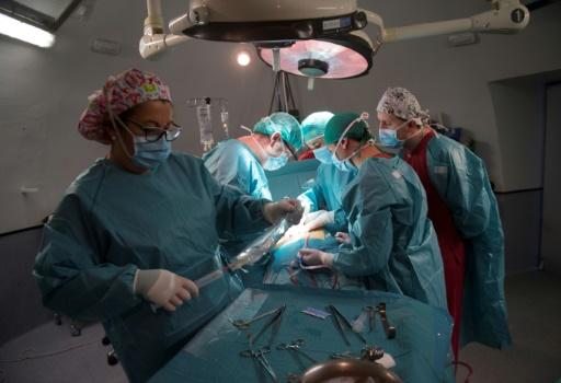 Des chirurgiens procèdent à la transplantation d'un rein pour le patient Juan Benito Druet, le 28 février 2017 à l'hôpital La Paz de Madrid © PIERRE-PHILIPPE MARCOU AFP