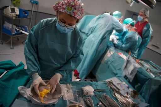 Une assistante prépare le rein qui va être transplanté au patient Juan Benito Druet, le 28 février 2017 à l'hôpital La Paz, à Madrid, en Espagne © PIERRE-PHILIPPE MARCOU AFP