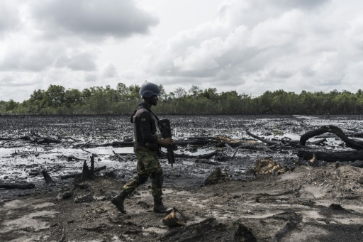 Des squelettes d'arbres morts calcinés sur le site d'une raffinerie illégale près de la ville de Warri, au Nigeria, le 19 avril 2017 © STEFAN HEUNIS AFP