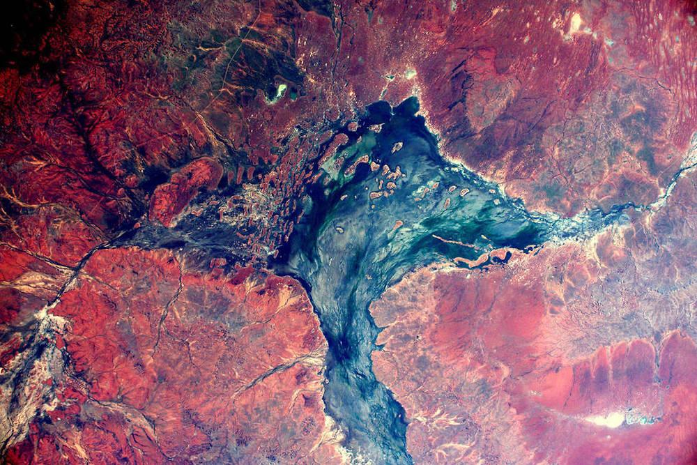 La brousse Australienne