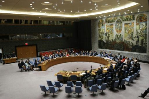 Les membres du Conseil de sécurité de l'ONU votent une résolution prévoyant de nouvelles sanctions contre la Corée du Nord, le 5 août 2017 à New York © EDUARDO MUNOZ ALVAREZ AFP