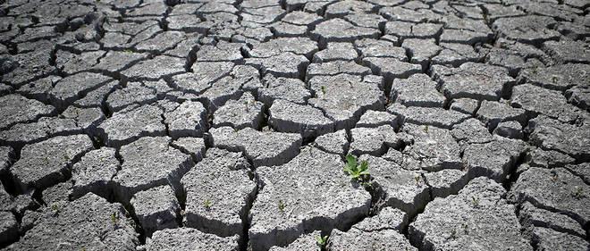 80 départements sont concernés par des restrictions d'eau depuis le mardi 8 août.