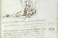 Dessin de machine volante. Manuscrit de Léonard de Vinci  (Leonardo da Vinci, 1452-1519), XVIe siecle. Paris, Bibliothèque de l'Institut