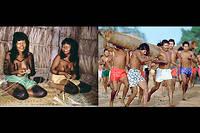 Les chasseurs-cueilleurs canelas partageaient tout, y compris femmes et maris. Une condition de leur survie dans la jungle amazonienne.