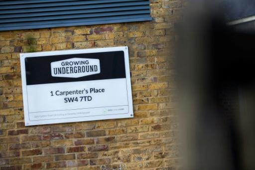 """Une plaque au nom du projet """"Growing Underground"""", à Clapham, dans le sud de Londres le 13 septembre 2017 © DANIEL LEAL-OLIVAS AFP"""