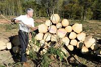"""Embûches. Laurent Wauquiez sur le site de l'entreprise forestière de Vincent Delorme, à Araules (Haute-Loire), le 14octobre. ©Elodie GREGOIRE/REA pour """"Le Point"""""""