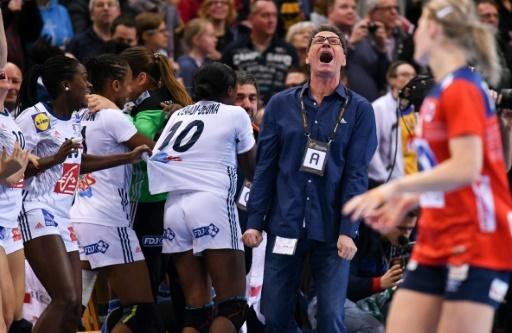 L'entraîneur des Bleues Olivier Krumbholz  (c) exulte après la victoire face à la Norvège en finale du Mondial de hand féminin, le 17 décembre 2017 à Hambourg © Patrik STOLLARZ AFP