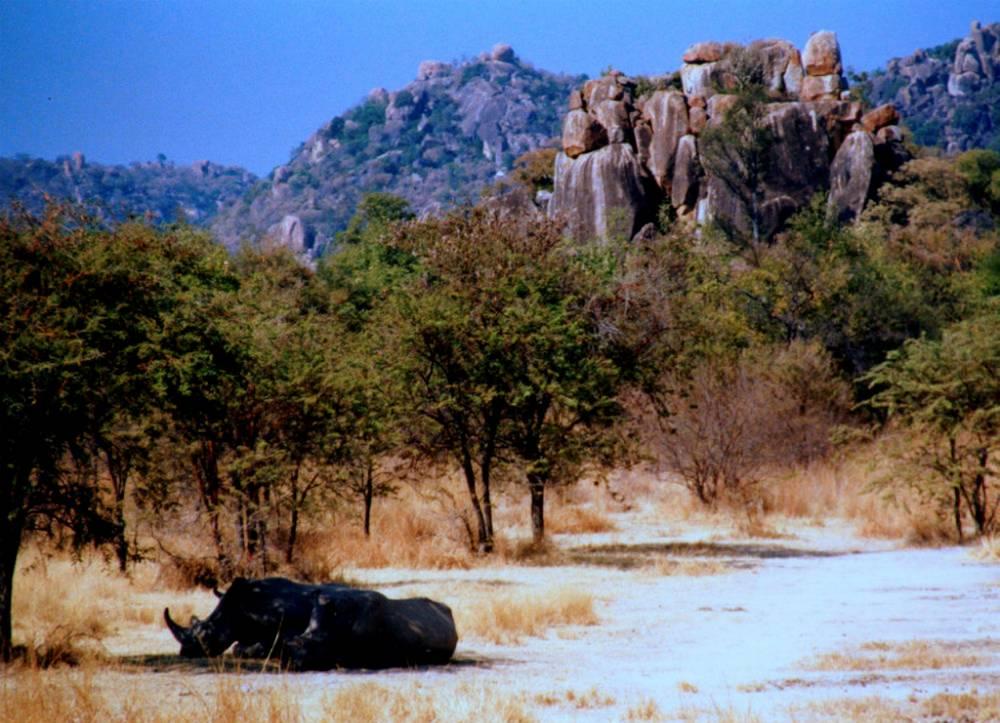 Le parc national des monts Matobo, créé en 1926, est le plus vieux du pays.  ©  Carine 06
