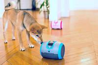 Au pied ! Doté d'un micro et d'une caméra, le robot Laïka (le nom de la chienne envoyée dans l'espace à bord de «Spoutnik» en 1957) de Camtoy permet àson propriétaire de parler à distance à son chien et de lui distribuer des friandises.  ©Lola Ledoux/Camtoy