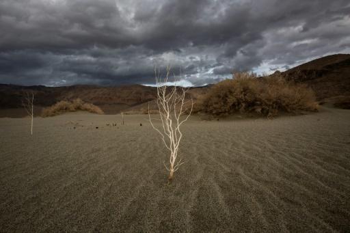 Sècheresse, incendies, orages, la Californie a subi bien des maux climatiques en 2017 © DAVID MCNEW AFP/Archives