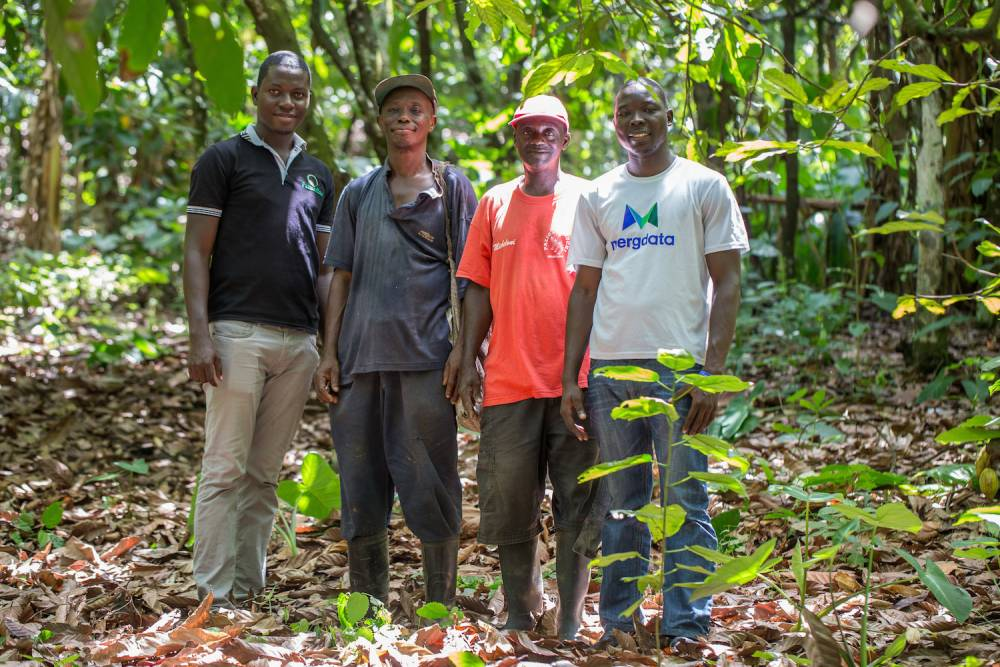 Patrick Sakyi de Farmerline, les cultivateurs de cacao Dwomoh Kwasi Christopher et Asante Bismark, et Schandorf Adu Bright de Farmerline posent dans une ferme de cacao à Kyekyewere, District d'Assin Sud, au Ghana. ©  Mwangi Kirubi / King Baudouin Foundation